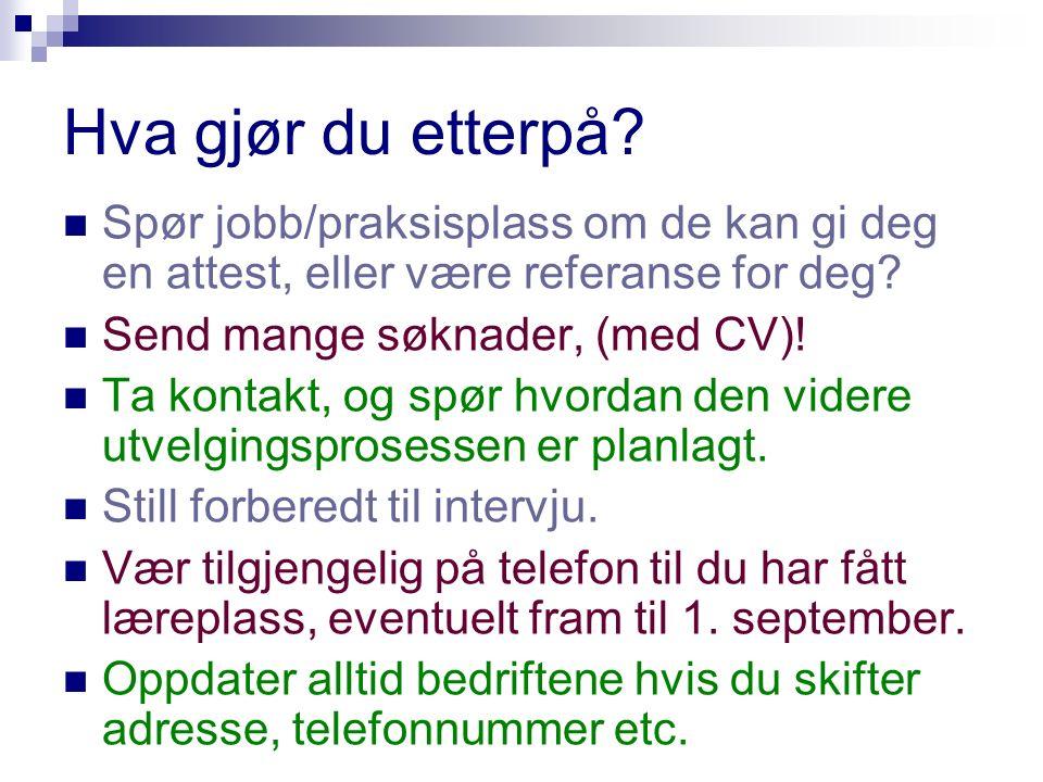 Aktuelle høyskoleutdanninger: Vg1 service og samferdsel Vg2 Salg, service sikkerhet Læretid 2 år 3.