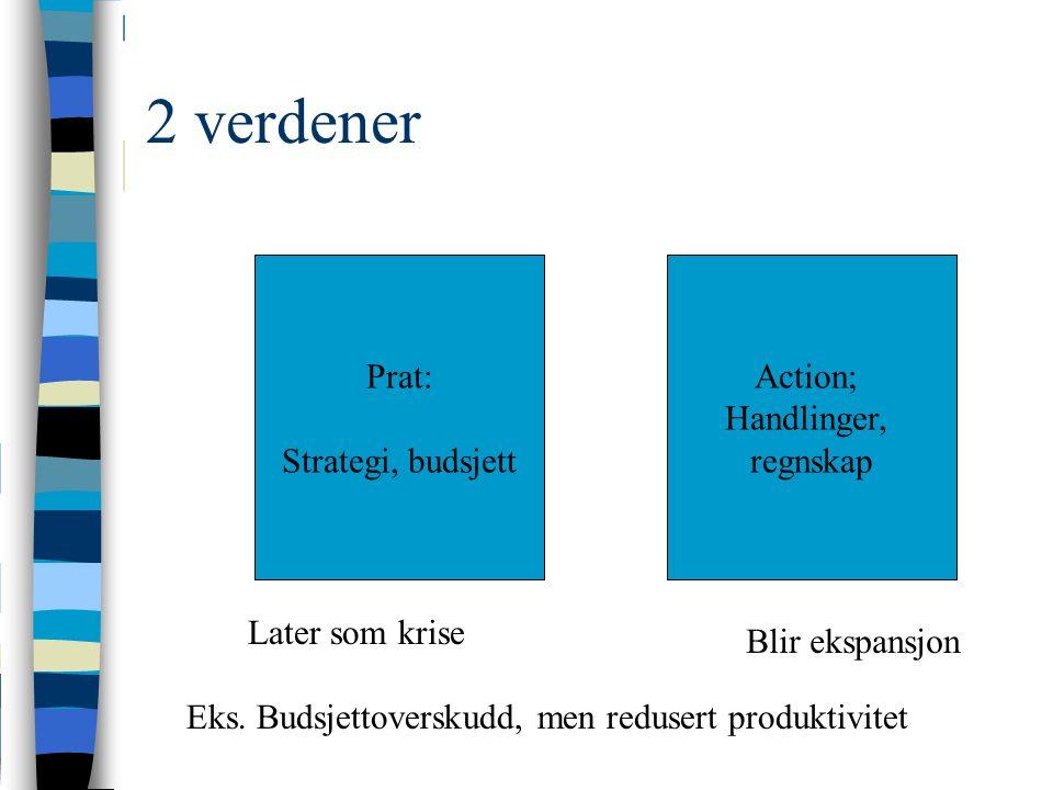 2 verdener Prat: Strategi, budsjett Action; Handlinger, regnskap Later som krise Eks.
