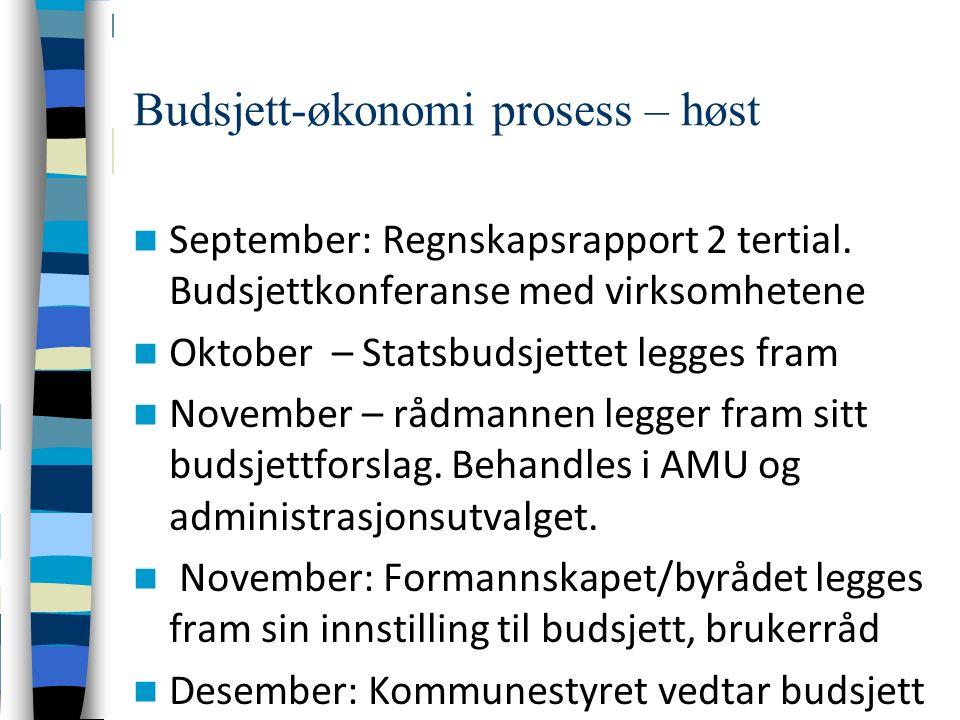 Budsjett-økonomi prosess – høst September: Regnskapsrapport 2 tertial.