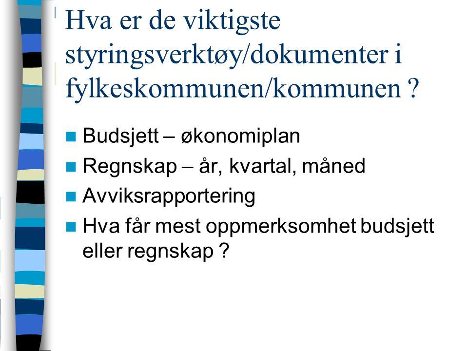 Hva er de viktigste styringsverktøy/dokumenter i fylkeskommunen/kommunen .