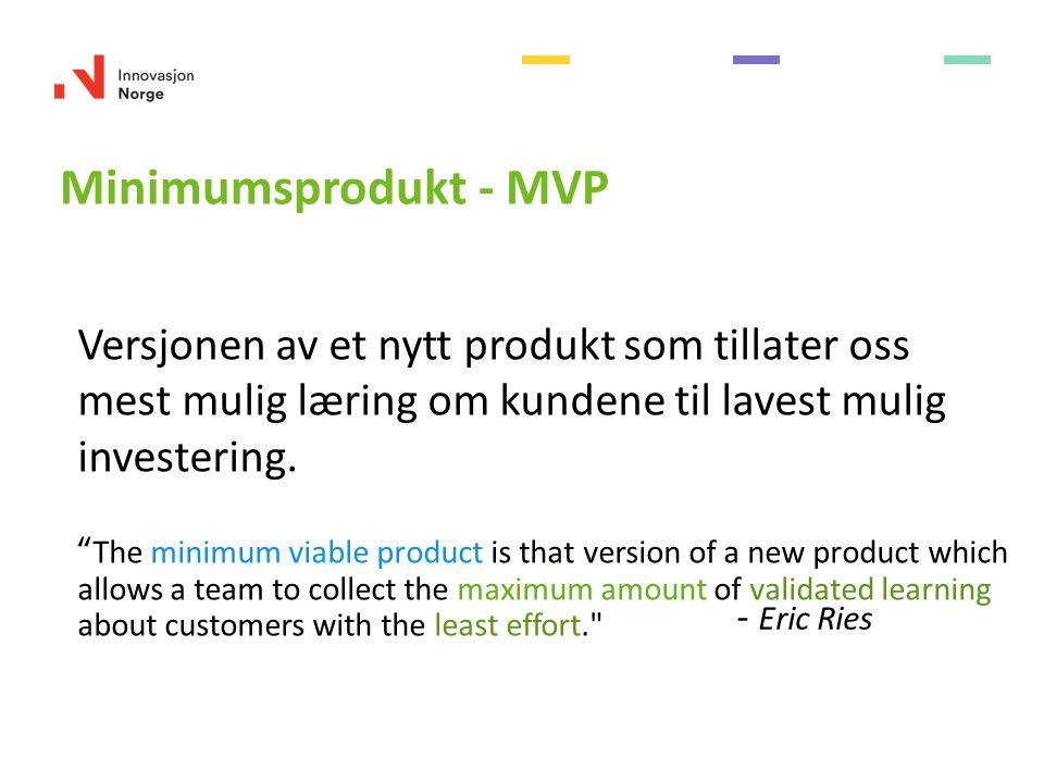 Versjonen av et nytt produkt som tillater oss mest mulig læring om kundene til lavest mulig investering.