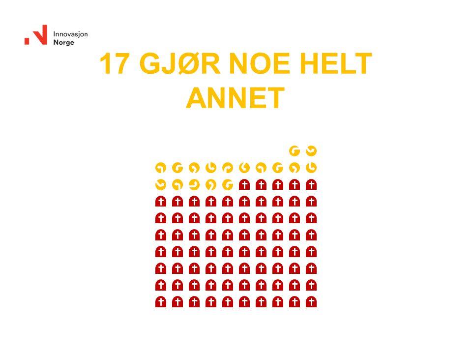 17 GJØR NOE HELT ANNET
