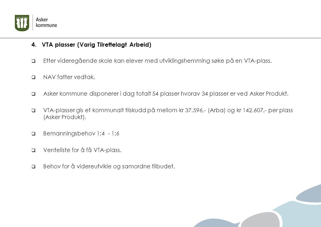 4. VTA plasser (Varig Tilrettelagt Arbeid)  Etter videregående skole kan elever med utviklingshemming søke på en VTA-plass.  NAV fatter vedtak.  As