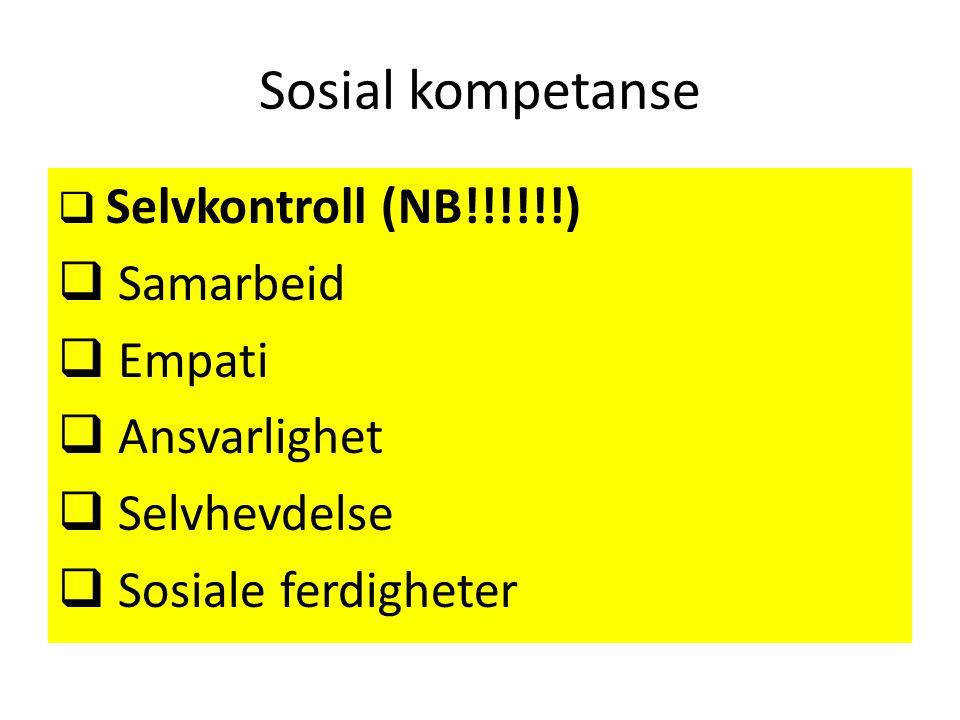 Sosial kompetanse  Selvkontroll (NB!!!!!!)  Samarbeid  Empati  Ansvarlighet  Selvhevdelse  Sosiale ferdigheter