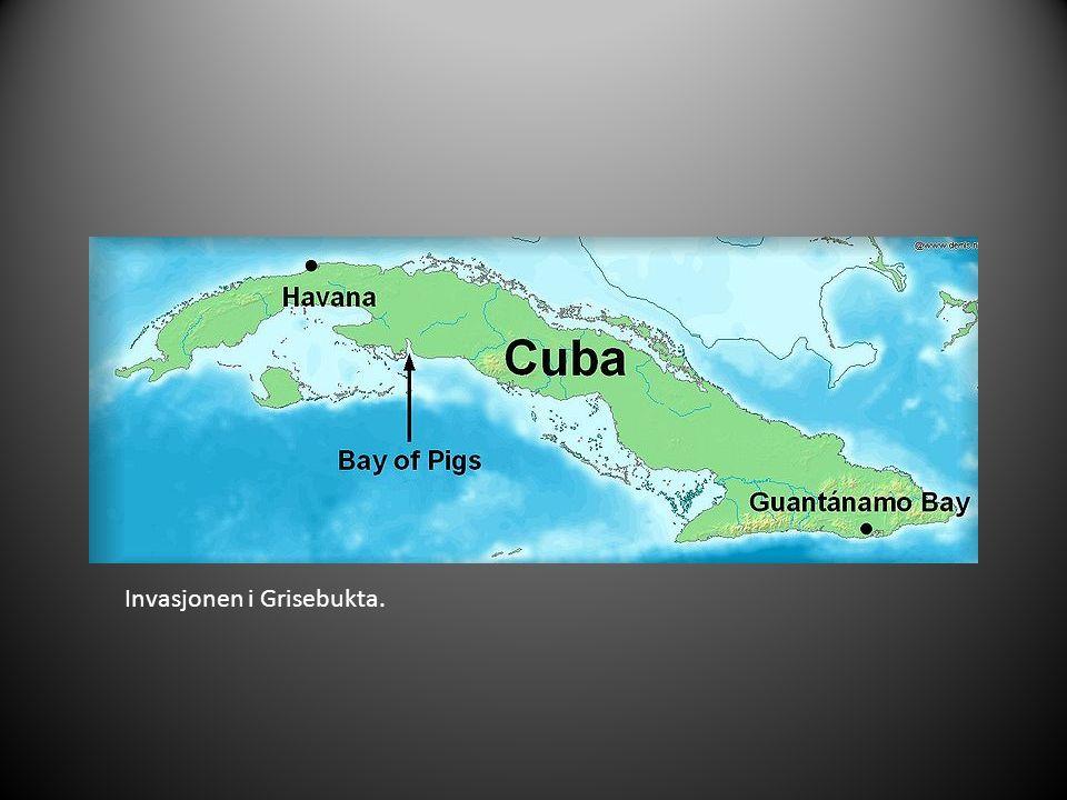 Invasjonen i Grisebukta.