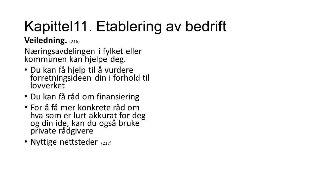 Kapittel11. Etablering av bedrift Veiledning.
