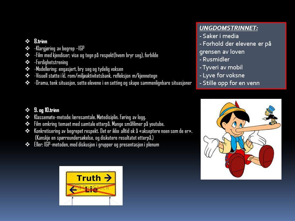  8.trinn  -Klargjøring av begrep –IGP  -Film med kjendiser; vise og tegn på respekt(hvem bryr seg), forbilde  -Ferdighetstrening  -Modellering: engasjert, bry seg og tydelig voksen  -Visuell støtte i kl.