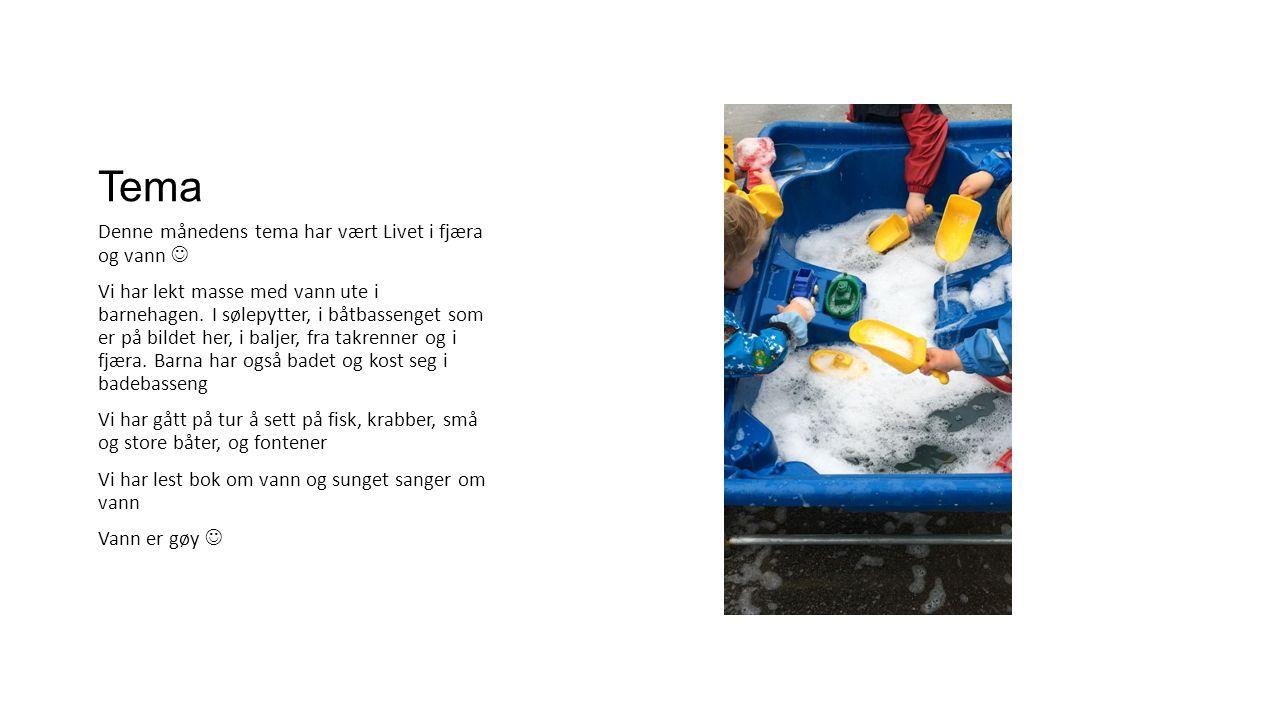 Tema Denne månedens tema har vært Livet i fjæra og vann Vi har lekt masse med vann ute i barnehagen.