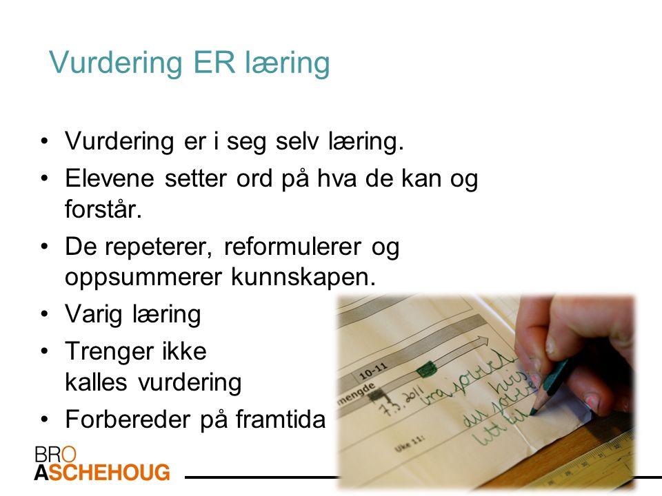 Vurdering ER læring Vurdering er i seg selv læring.