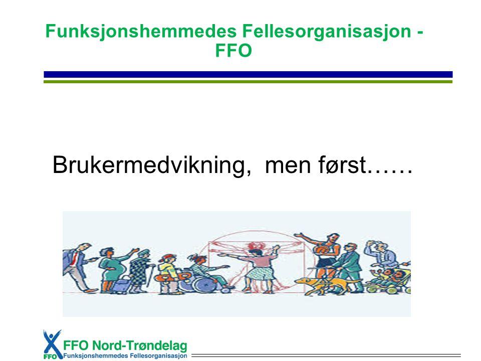 Funksjonshemmedes Fellesorganisasjon - FFO Brukermedvikning, men først……