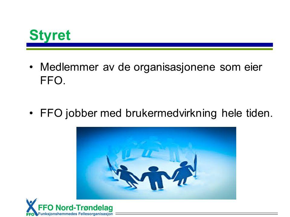 Styret Medlemmer av de organisasjonene som eier FFO. FFO jobber med brukermedvirkning hele tiden.