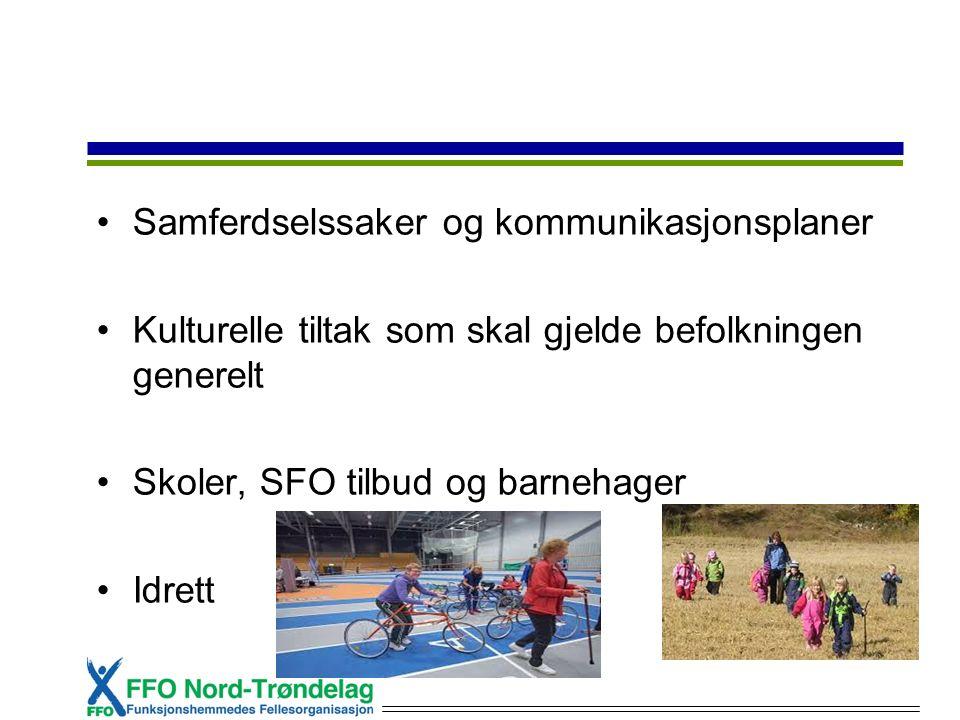 Samferdselssaker og kommunikasjonsplaner Kulturelle tiltak som skal gjelde befolkningen generelt Skoler, SFO tilbud og barnehager Idrett