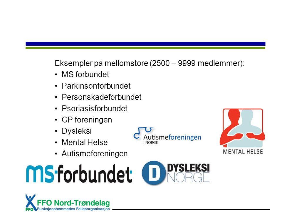 Eksempler på mellomstore (2500 – 9999 medlemmer): MS forbundet Parkinsonforbundet Personskadeforbundet Psoriasisforbundet CP foreningen Dysleksi Mental Helse Autismeforeningen