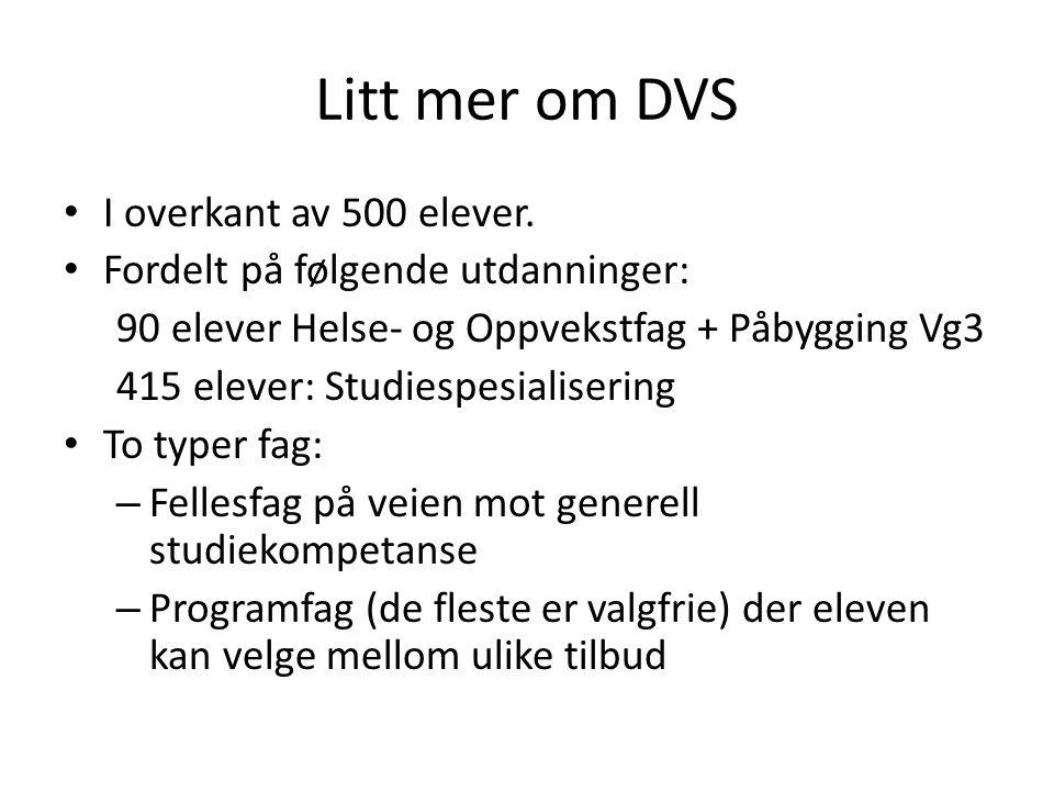 Litt mer om DVS I overkant av 500 elever.