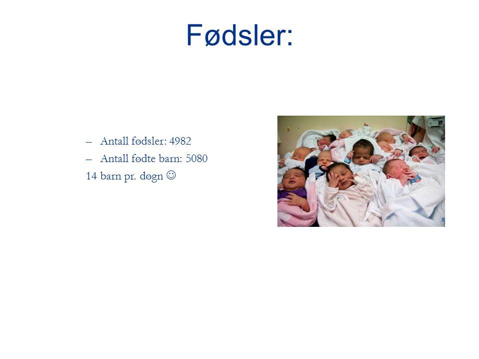 –Antall fødsler: 4982 –Antall fødte barn: 5080 14 barn pr. døgn Fødsler: