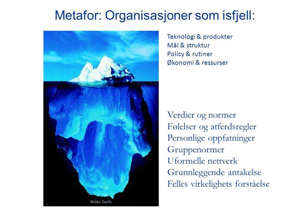 Metafor: Organisasjoner som isfjell: Teknologi & produkter Mål & struktur Policy & rutiner Økonomi & ressurser Verdier og normer Følelser og atferdsregler Personlige oppfatninger Gruppenormer Uformelle nettverk Grunnleggende antakelse Felles virkelighets forståelse