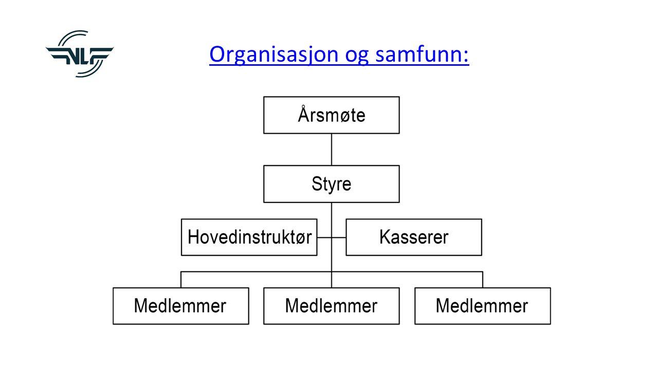Organisasjon og samfunn: