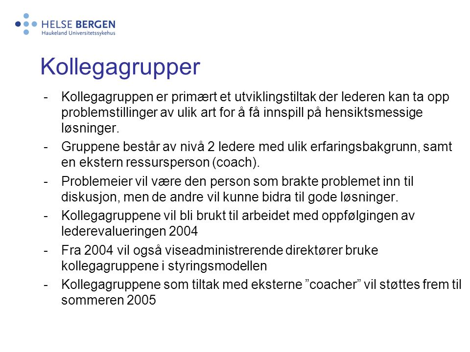  Strategiutvikling  Beslutningstaking  Problemløsning  Støtte Foretaksledelsen Adm.dir.