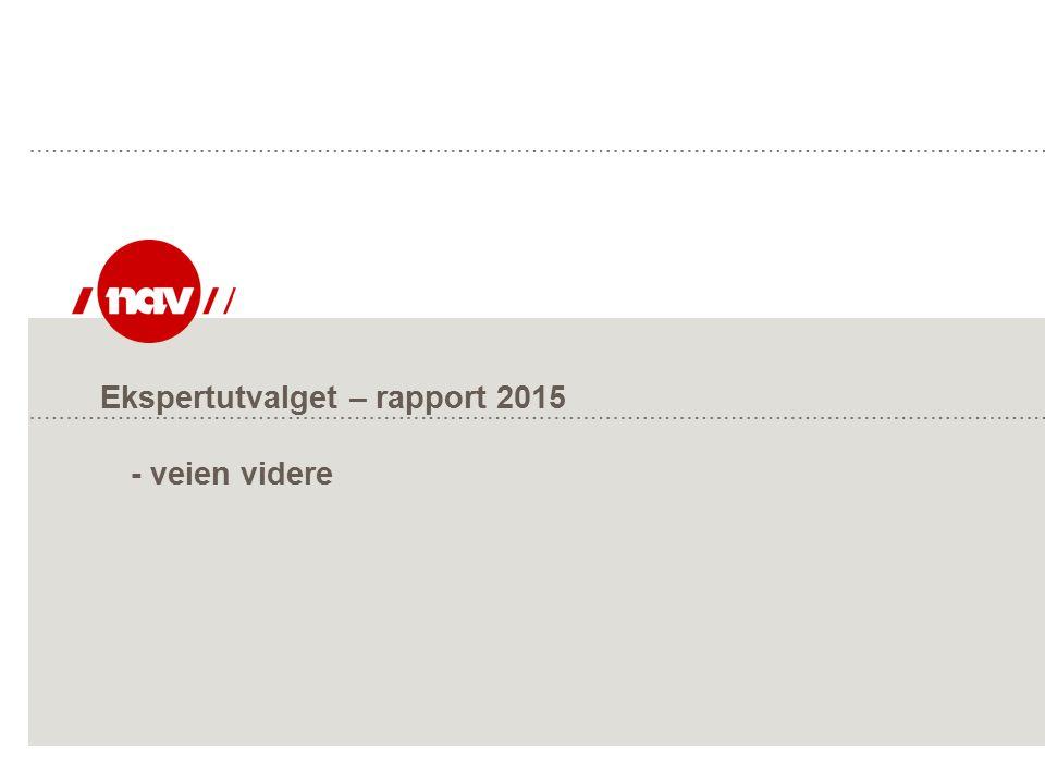 Ekspertutvalget – rapport 2015 - veien videre