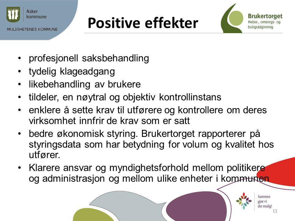 Positive effekter profesjonell saksbehandling tydelig klageadgang likebehandling av brukere tildeler, en nøytral og objektiv kontrollinstans enklere å