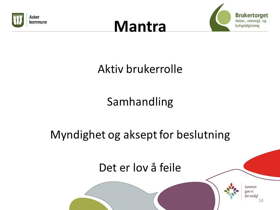 Mantra Aktiv brukerrolle Samhandling Myndighet og aksept for beslutning Det er lov å feile 24