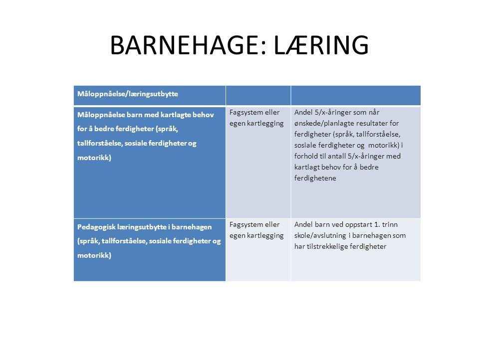 BARNEHAGE: LÆRING Måloppnåelse/læringsutbytte Måloppnåelse barn med kartlagte behov for å bedre ferdigheter (språk, tallforståelse, sosiale ferdigheter og motorikk) Fagsystem eller egen kartlegging Andel 5/x-åringer som når ønskede/planlagte resultater for ferdigheter (språk, tallforståelse, sosiale ferdigheter og motorikk) i forhold til antall 5/x-åringer med kartlagt behov for å bedre ferdighetene Pedagogisk læringsutbytte i barnehagen (språk, tallforståelse, sosiale ferdigheter og motorikk) Fagsystem eller egen kartlegging Andel barn ved oppstart 1.
