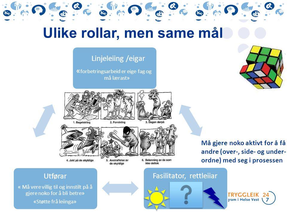 Ulike rollar, men same mål Linjeleiing /eigar « forbetringsarbeid er eige fag og må lærast» Fasilitator, rettleiiar Utførar « Må vere villig til og in