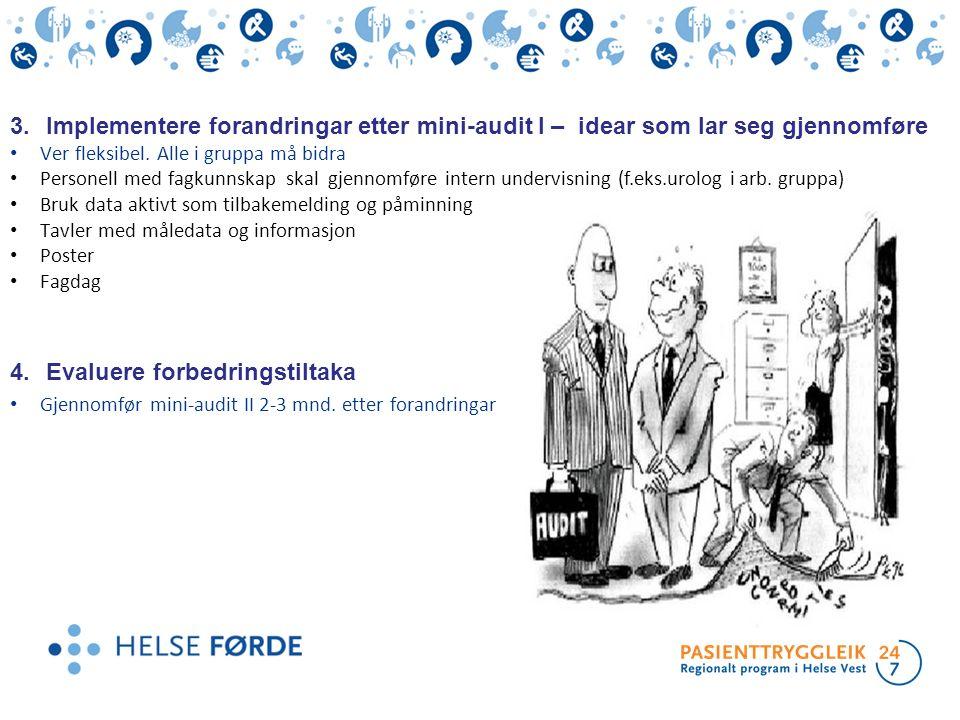 3.Implementere forandringar etter mini-audit I – idear som lar seg gjennomføre Ver fleksibel. Alle i gruppa må bidra Personell med fagkunnskap skal gj
