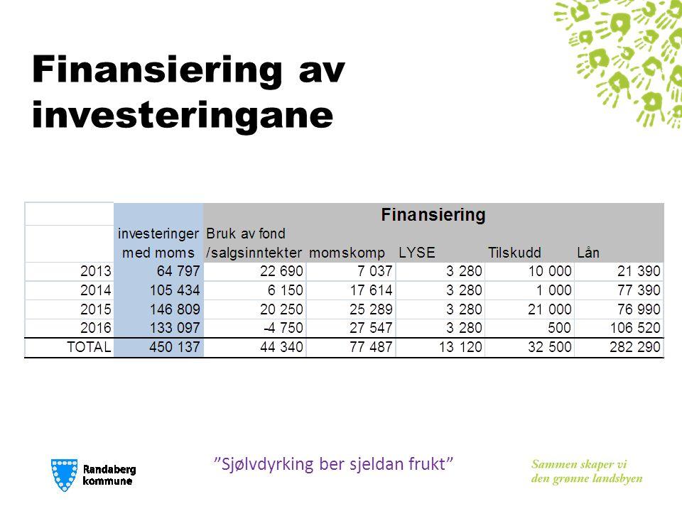 "Finansiering av investeringane ""Sjølvdyrking ber sjeldan frukt"""