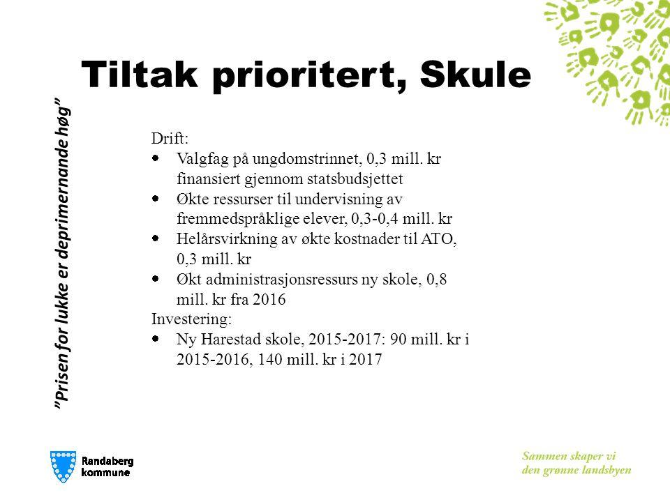 Tiltak prioritert, Skule Drift:  Valgfag på ungdomstrinnet, 0,3 mill.