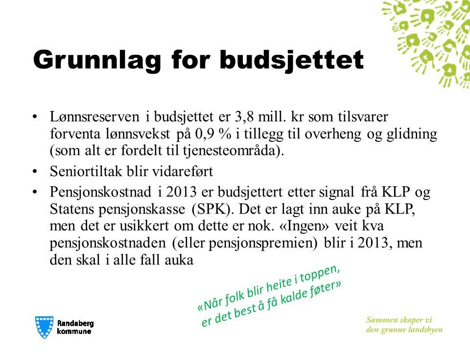 Tiltak prioritert, Plan og utvikling Drift:  Ny arealplanleggerstilling Investering:  Områdeplaner (Sentrum, Sentrum Nord, m.m.) 1,0 mill.