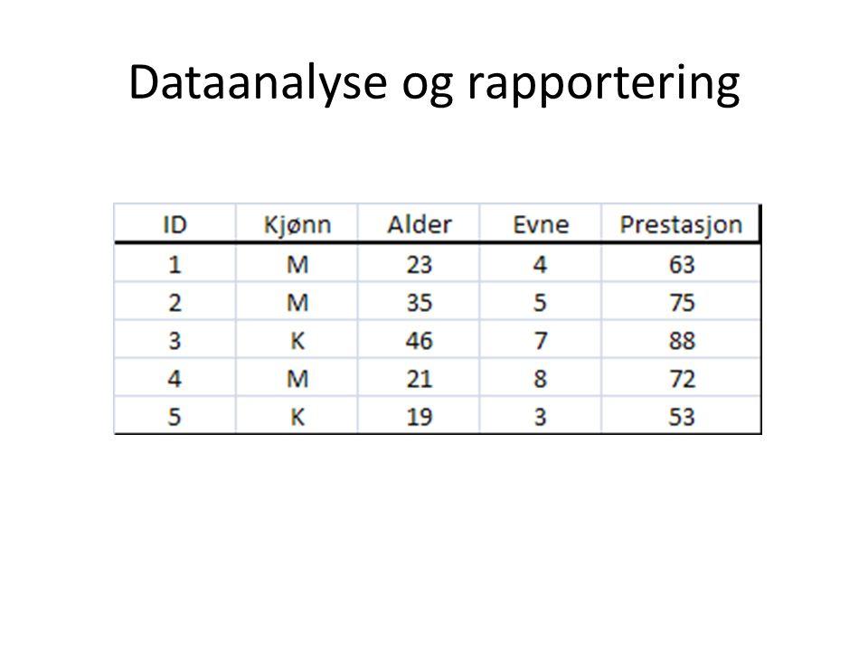 Dataanalyse og rapportering