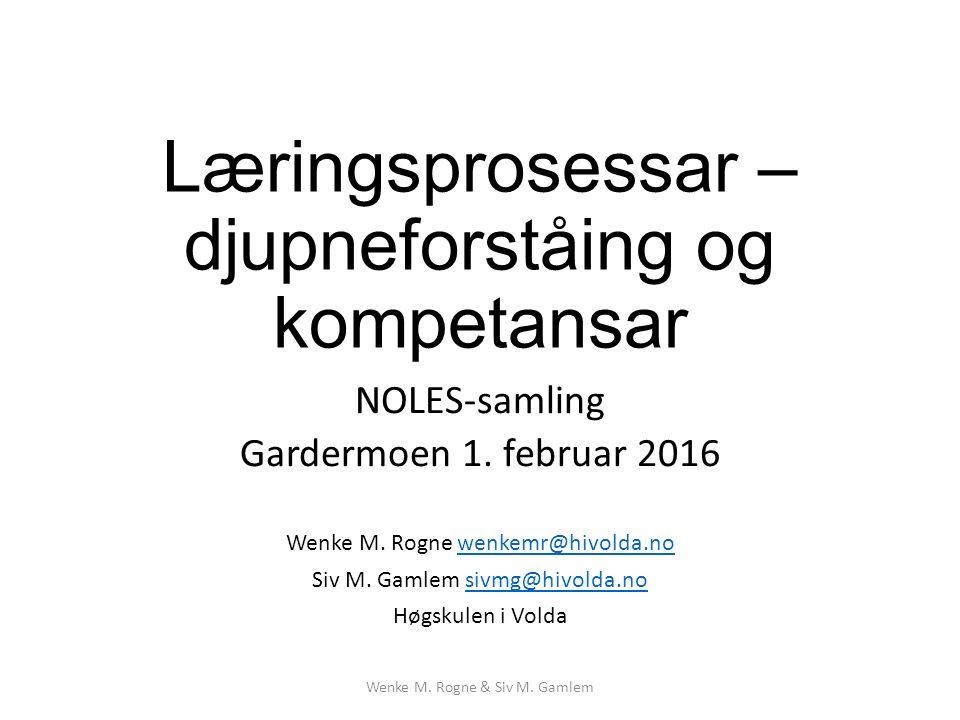 Læringsprosessar – djupneforståing og kompetansar NOLES-samling Gardermoen 1.
