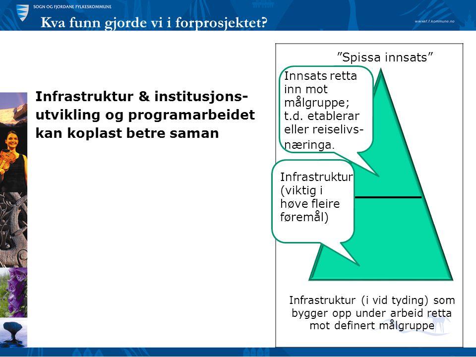 Kva funn gjorde vi i forprosjektet? Infrastruktur & institusjons- utvikling og programarbeidet kan koplast betre saman Innsats retta inn mot målgruppe
