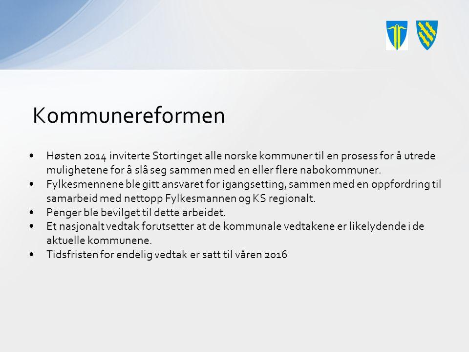 Veien videre Kommunestyremøtene 15.og 16.
