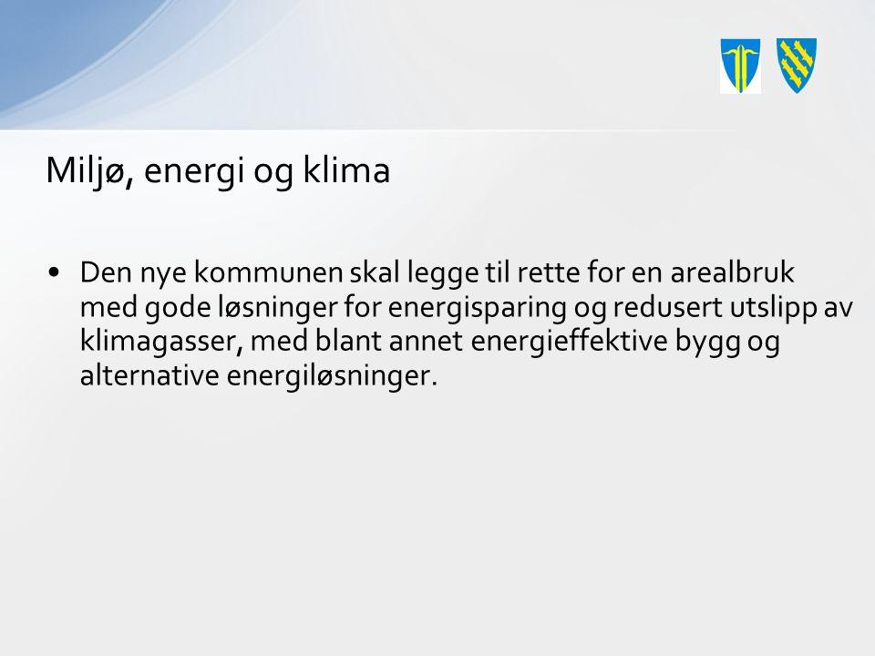 Miljø, energi og klima Den nye kommunen skal legge til rette for en arealbruk med gode løsninger for energisparing og redusert utslipp av klimagasser, med blant annet energieffektive bygg og alternative energiløsninger.
