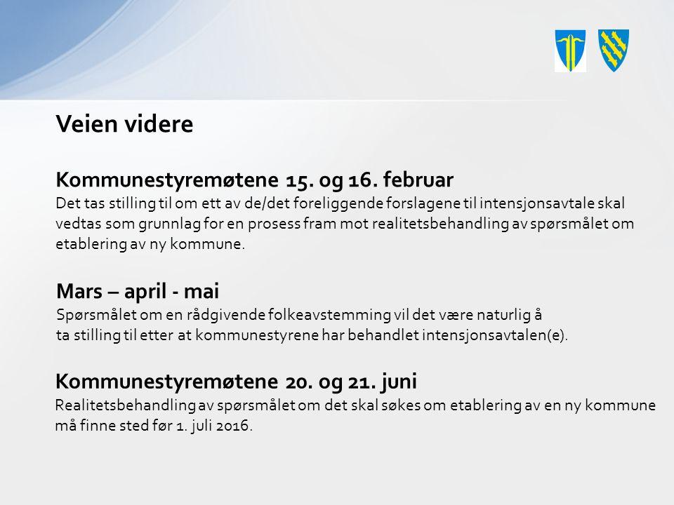 Veien videre Kommunestyremøtene 15. og 16.