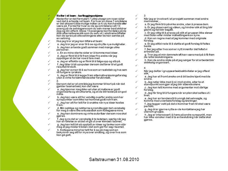Saltstraumen 31.08.2010 Roller i et team – kartleggingsskjema Nedenfor er det formulert 7 ulike utsagn om noen sider ved det å arbeide i et team.