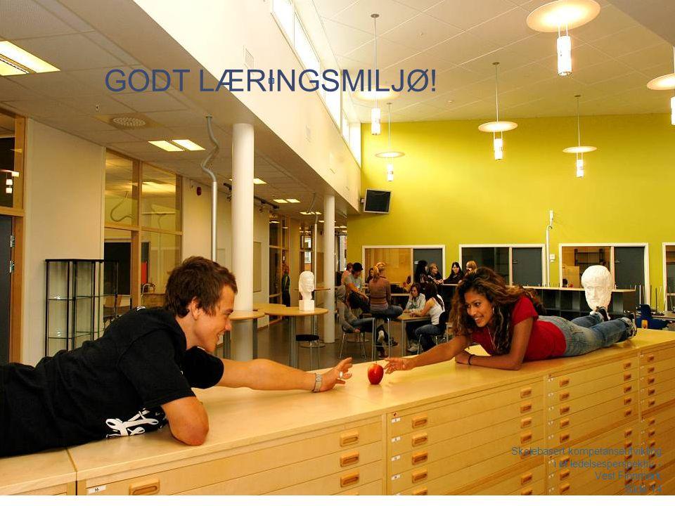 Laila Lerum 180416 GODT LÆRINGSMILJØ.