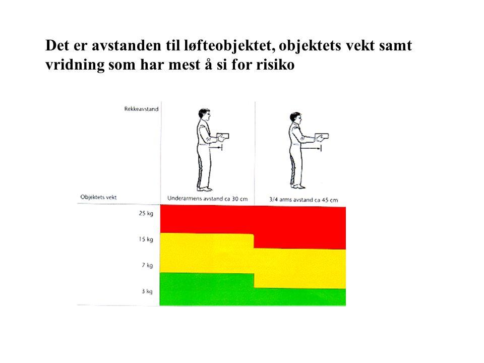 Det er avstanden til løfteobjektet, objektets vekt samt vridning som har mest å si for risiko
