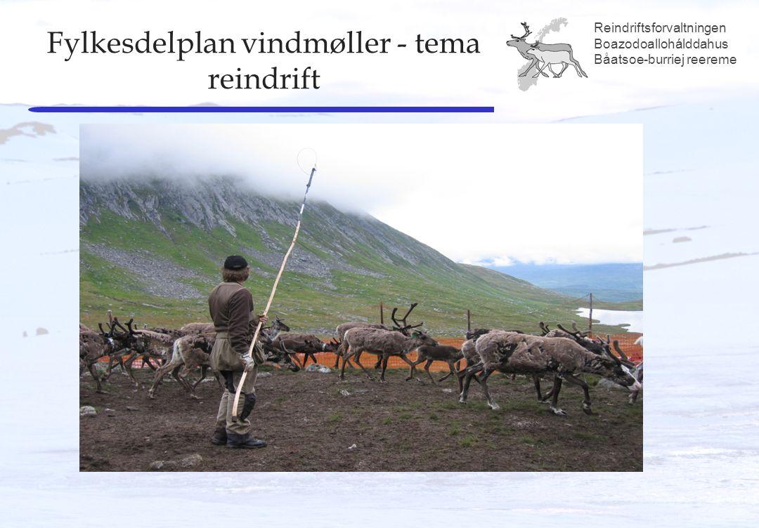 Reindriftsforvaltningen Boazodoallohálddahus Båatsoe-burriej reereme Fylkesdelplan vindmøller - tema reindrift