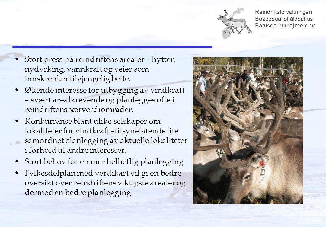 Reindriftsforvaltningen Boazodoallohálddahus Båatsoe-burriej reereme Stort press på reindriftens arealer – hytter, nydyrking, vannkraft og veier som innskrenker tilgjengelig beite.