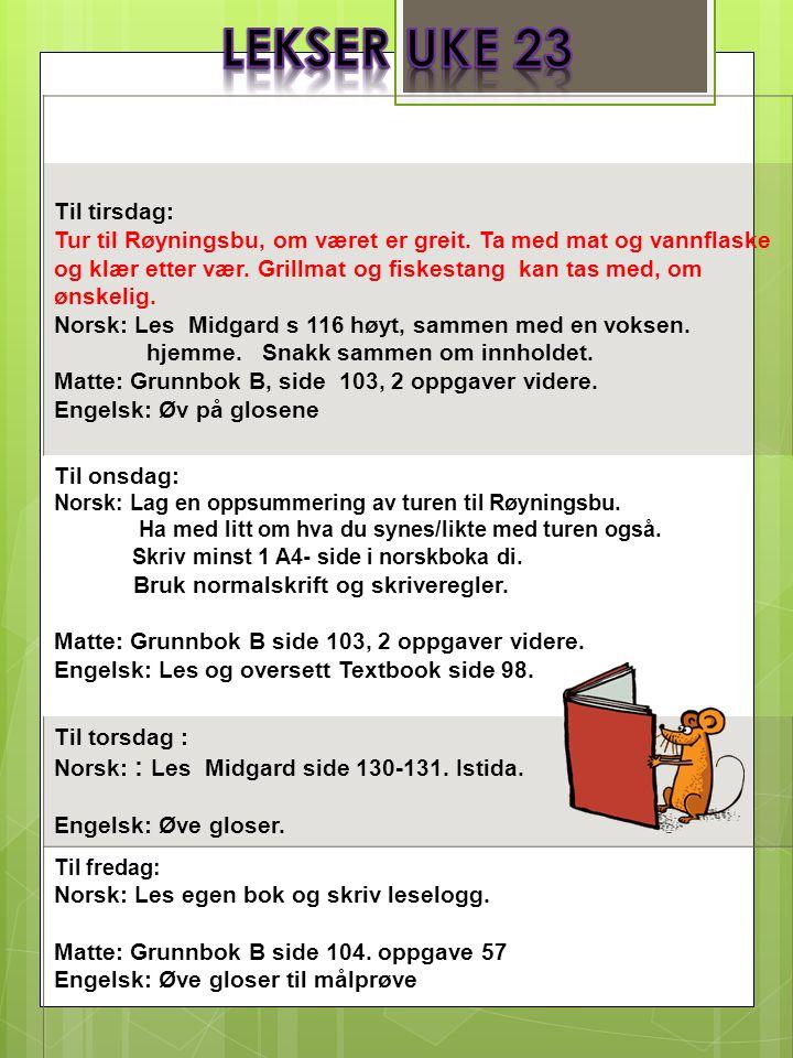 Til tirsdag: Tur til Røyningsbu, om været er greit.