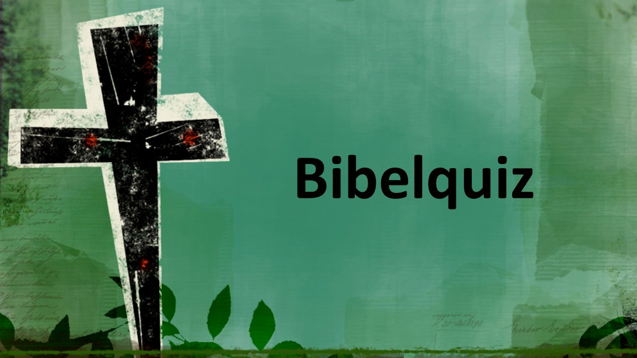 Hvilke språk ble Bibelen skrevet på.