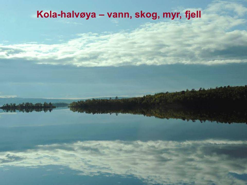 Kola-halvøya – vann, skog, myr, fjell