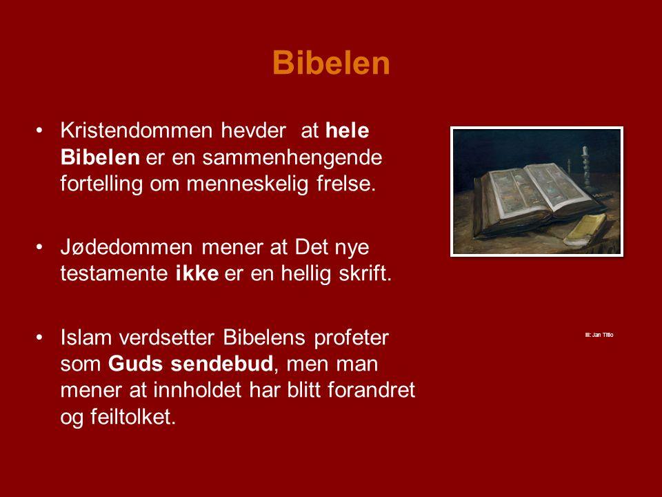 Bibelen Kristendommen hevder at hele Bibelen er en sammenhengende fortelling om menneskelig frelse.