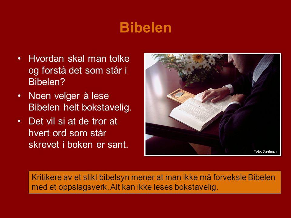 Bibelen Hvordan skal man tolke og forstå det som står i Bibelen.