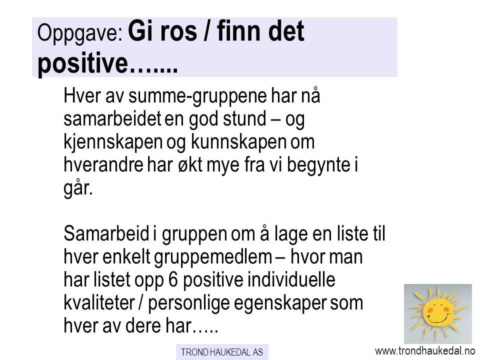 Oppgave: Gi ros / finn det positive…....