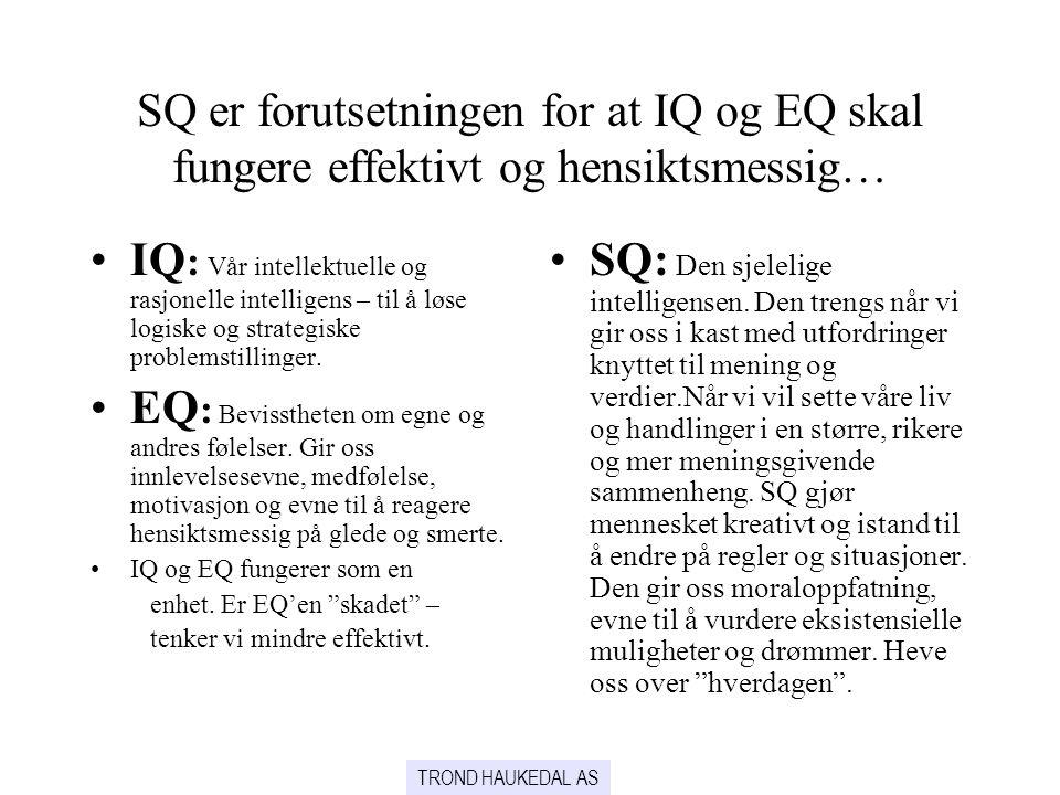 SQ er forutsetningen for at IQ og EQ skal fungere effektivt og hensiktsmessig… IQ : Vår intellektuelle og rasjonelle intelligens – til å løse logiske og strategiske problemstillinger.