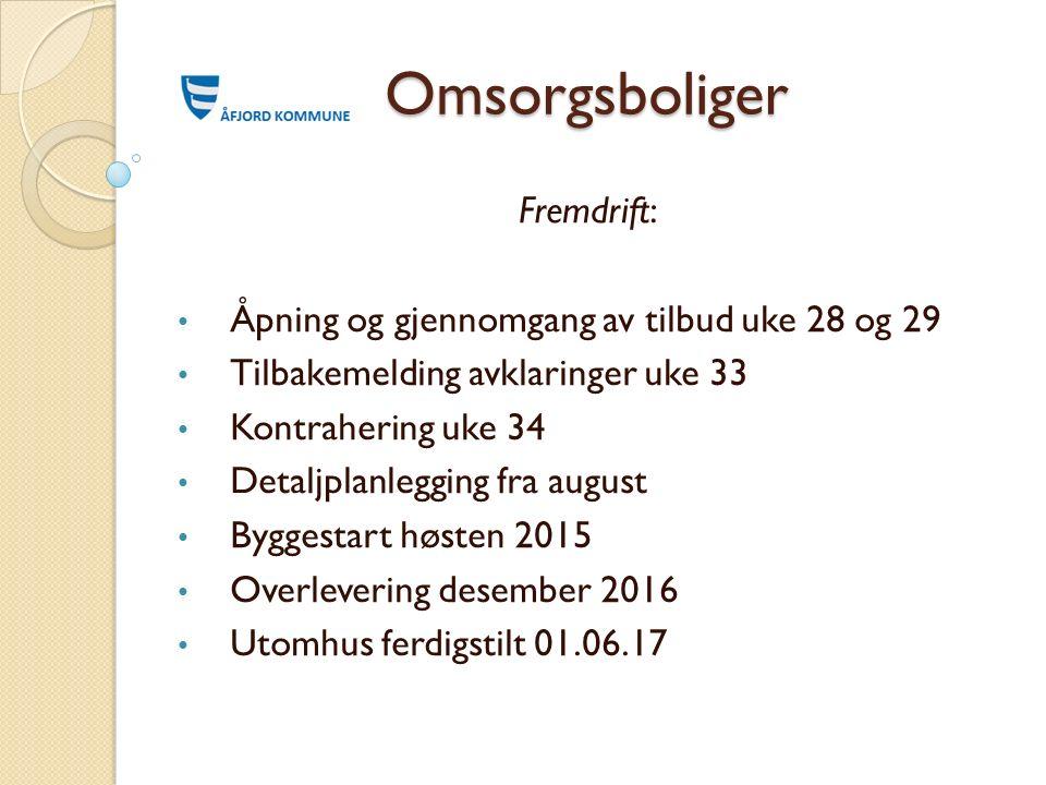 Omsorgsboliger Fremdrift: Åpning og gjennomgang av tilbud uke 28 og 29 Tilbakemelding avklaringer uke 33 Kontrahering uke 34 Detaljplanlegging fra aug